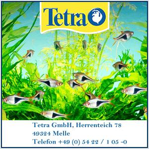Sponsor Tetra